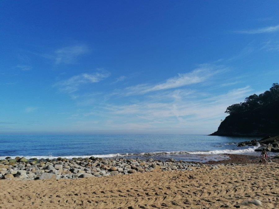 Foto de las vacaciones de Enoch de una playa con algas