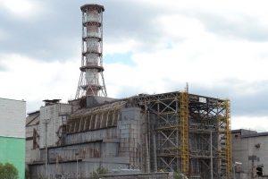 Fauna en Chernobil, con German Orizaola #51